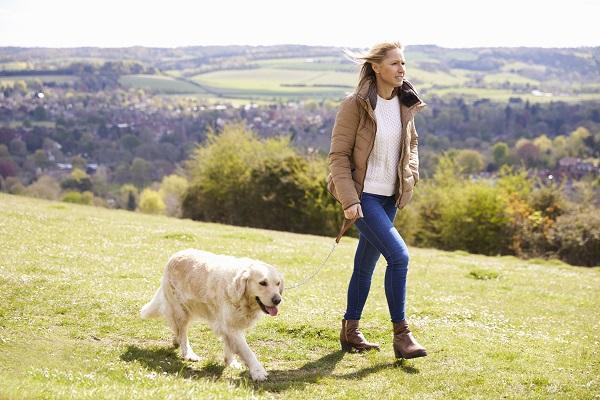 Perder peso en la menopausia